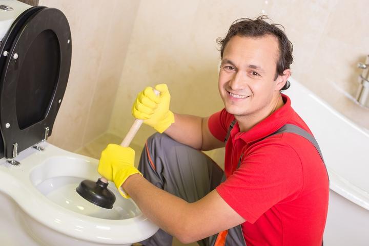Plunger Toilet 201801